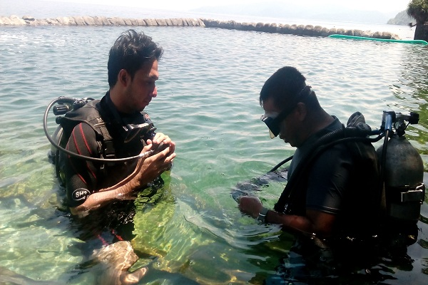 eagle_point_resort_diving_resorts_in_anilao_02